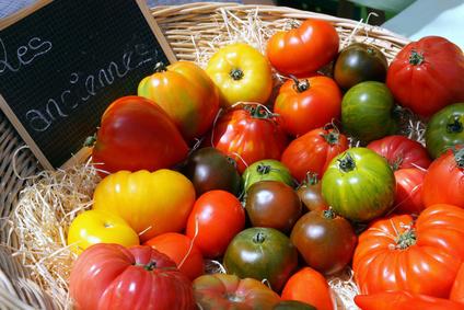 """Des tomates """"Anciennes"""" !"""